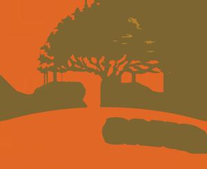 Twin Oaks – Hudson Lots for Sale